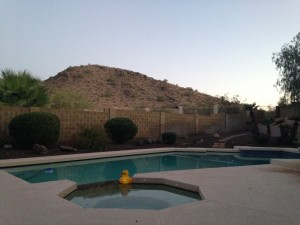 View from the back patio